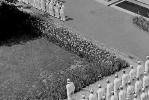 A Navy student, in a photo taken from the Journalism Building, May 1942.